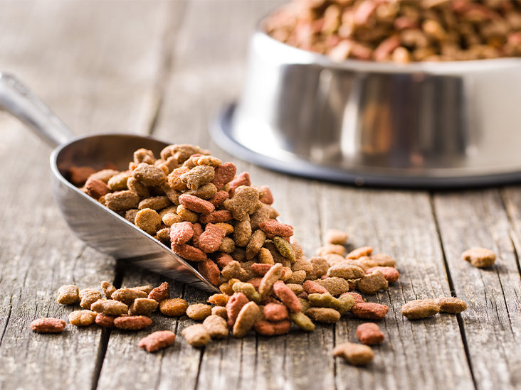 Why Buy Dog Food From A Trusted Source?